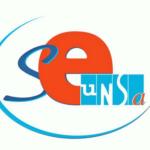 Logo SE - 500 X 500
